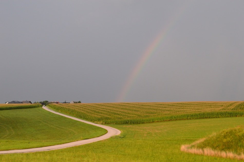 Rainbow in country side