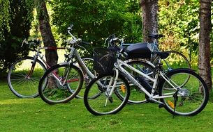 three bicycles on green grass in the park