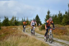 people riding Mountain Bikes in countryside