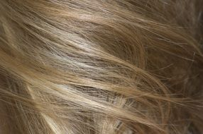 Hair Detailed Flash Blonde