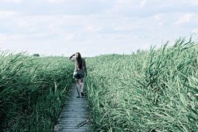 girl on a wooden path among tall grass