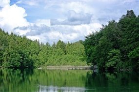 lake among green forest on a sunny day