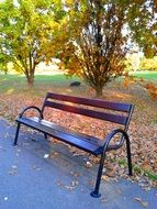 picturesque and pretty Bench