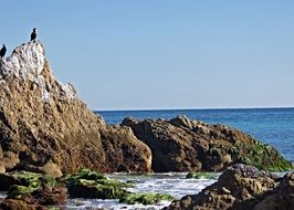 scenic rocky Shore of Pacific Ocean, usa, california
