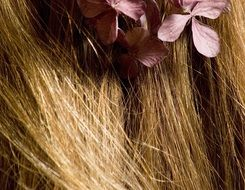 flowers in the blonde hair