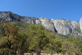 yosemite national park mountain trees landscape