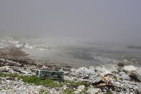 garbage on a foggy seashore