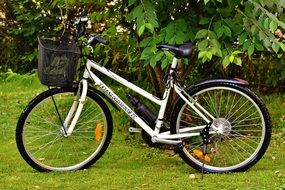 bike with a black basket on green grass