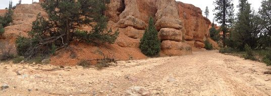 rocks in the Bryce Canyon