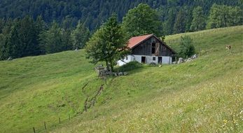 countryside lug green field Landscape Nature Bavaria