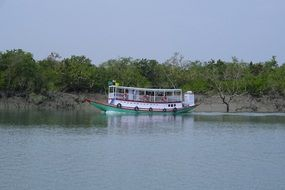tourist Boat on River at Sundarbans Mangroves, india