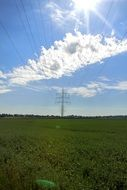 power lines on the summer field