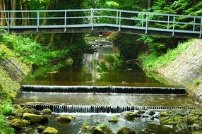 bridge over cascading river in the forest