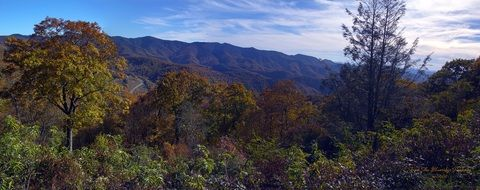 panoramic view of blue ridge parkway on a sunny day