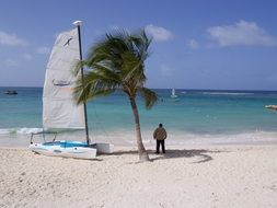 sailing Boat on Sand Beach and man beneath palm tree looking at Water
