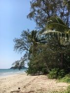 tropical beach in thailand on a sunny day