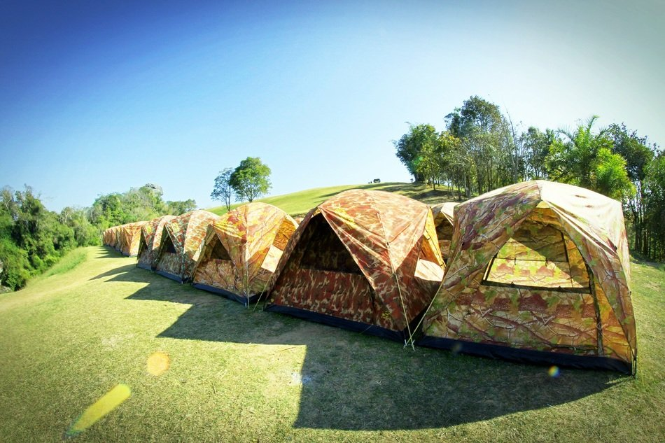 Camp Tents sunny Forest Outdoor