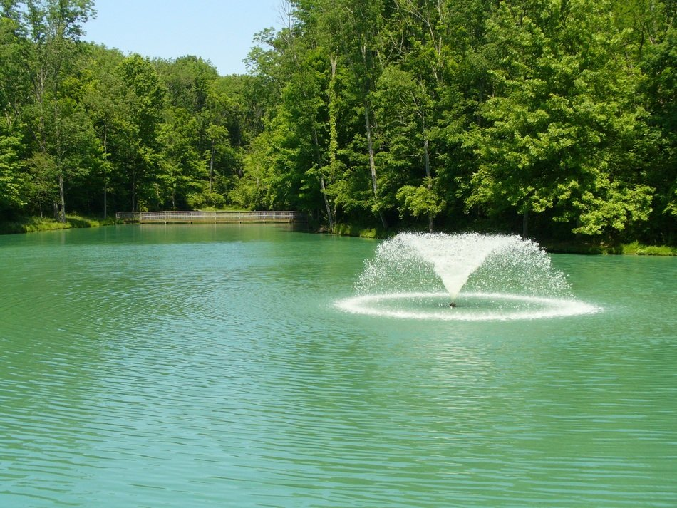 fountain among the pond in the park
