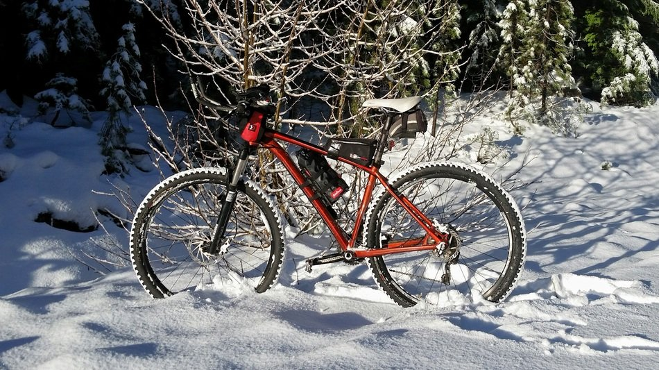 Snow Bike in a forest