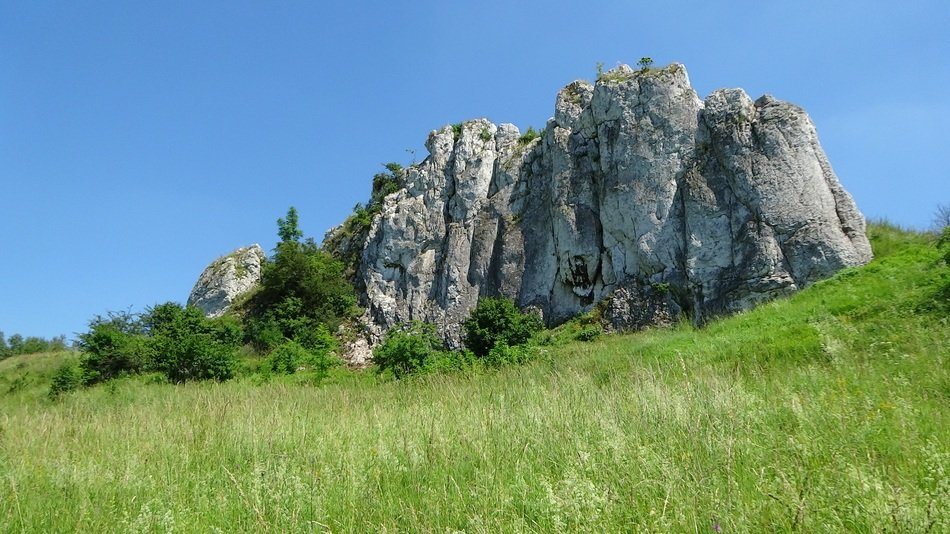 Beautiful limestone rocks on a green hill at blue sky background in Poland