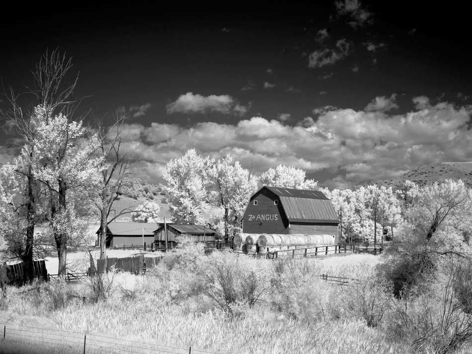 black and white photo of a barn on a ranch in North America