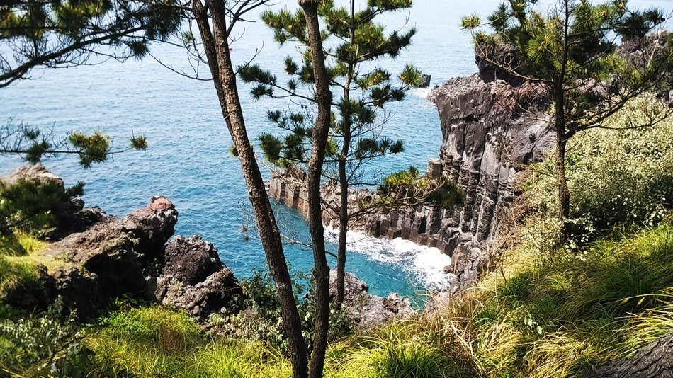 panorama of the picturesque coast of jeju do island