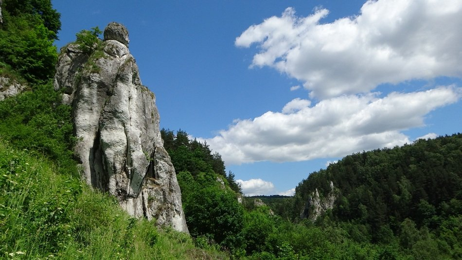 limestone cliffs in green trees in Poland