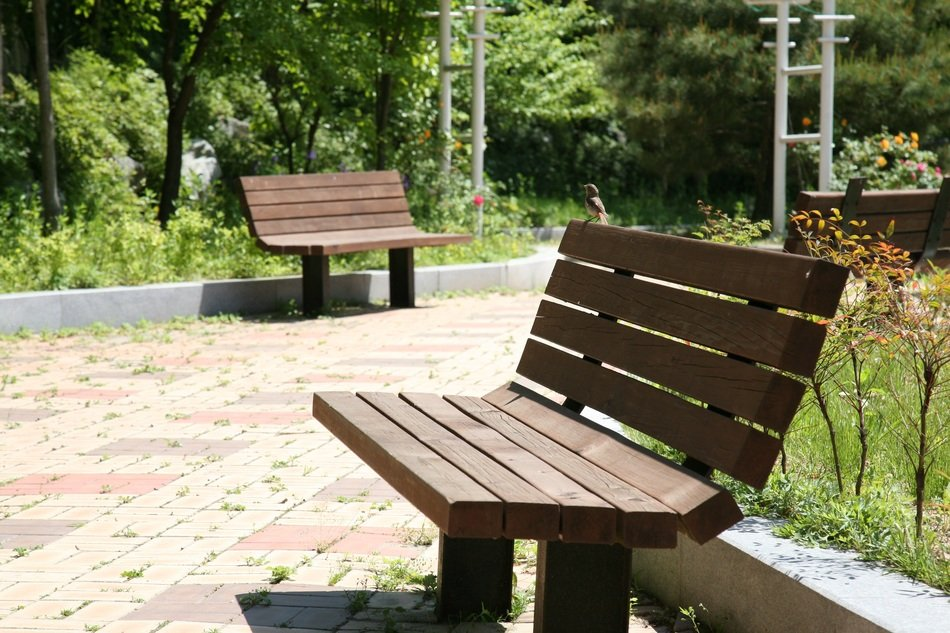 benches in picturesque and pretty Park