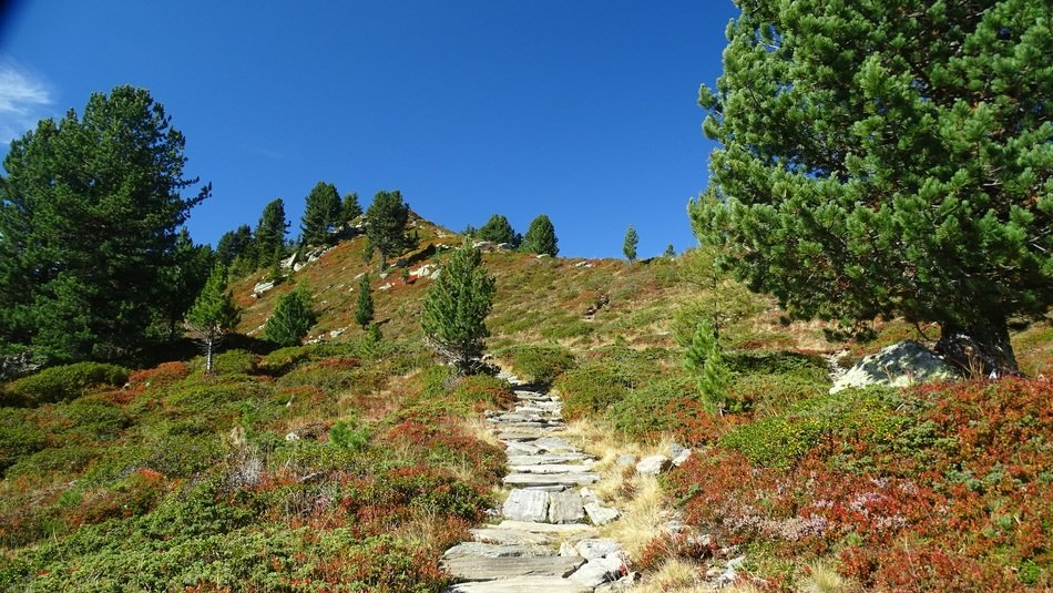stone walk path on hill at garden, germany, South Tyrol