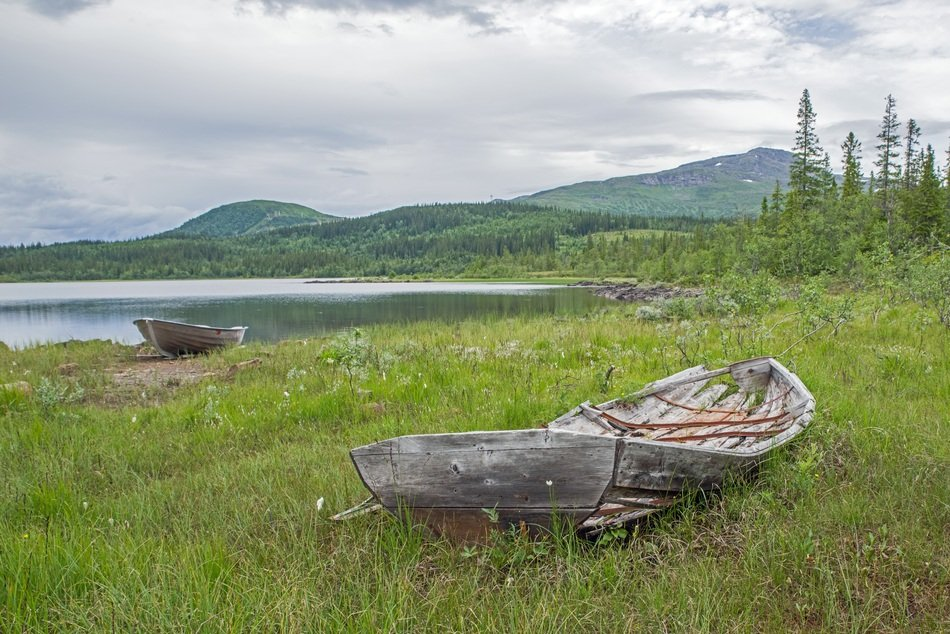 old wrecked boats on the green shore of a lake in sweden