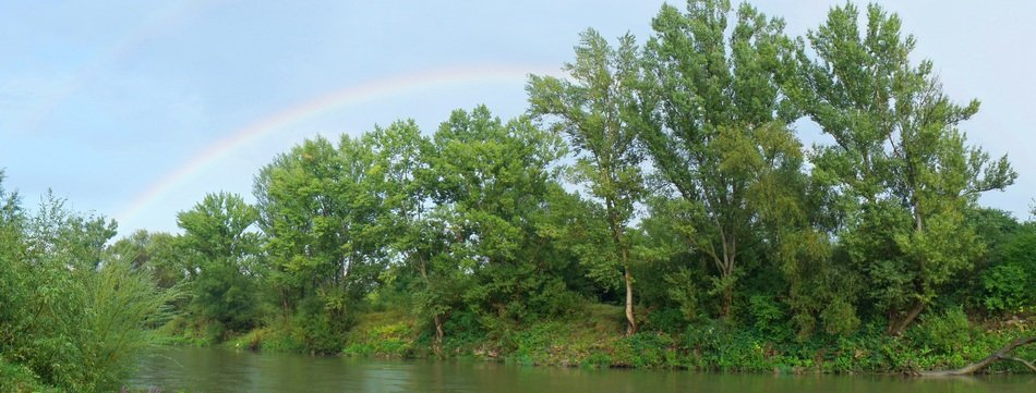 Rainbow and Green Trees River scene