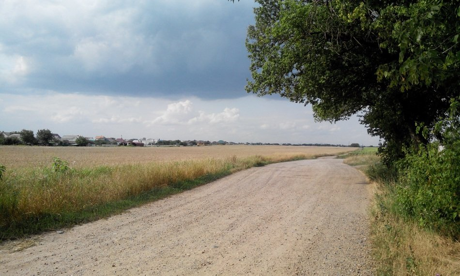 soil road at field in countryside, summer landscape