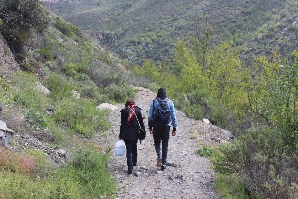 hiking in the mountains of baja california