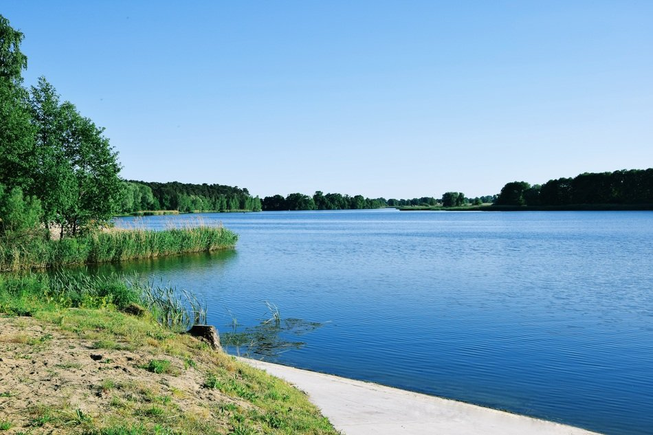 panoramic view of the lake on a summer day