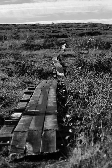 black and white photo of a wooden foot bridge