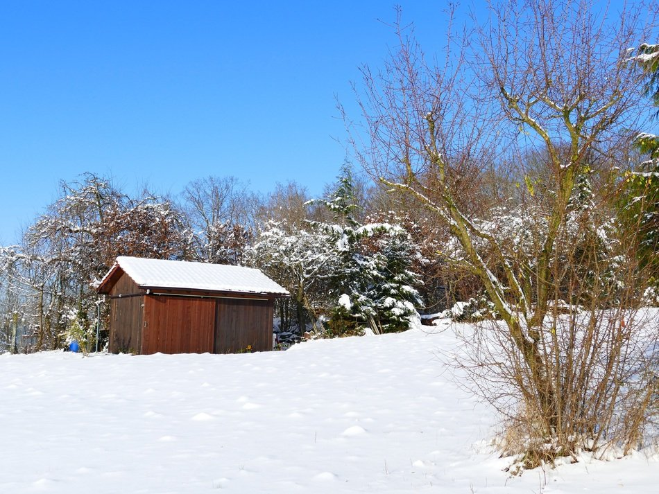 Wooden hut in snow on the beautiful landscape with plants in winter