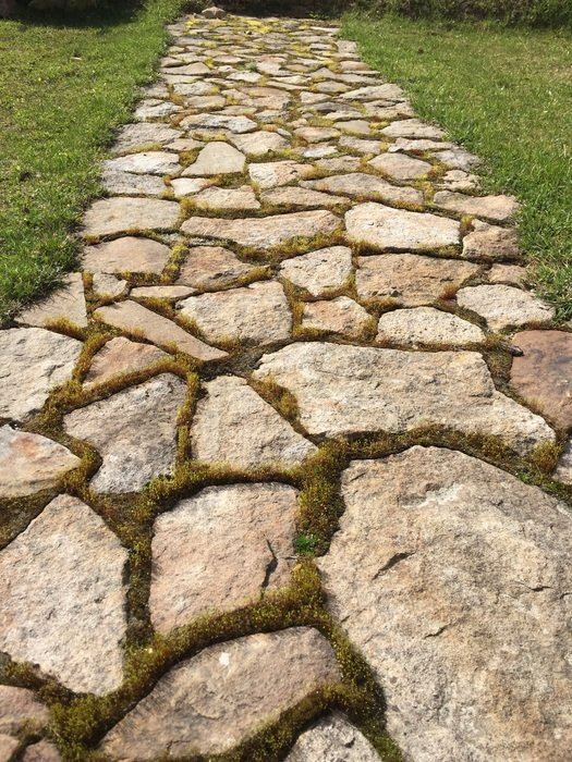 the stone path in a garden