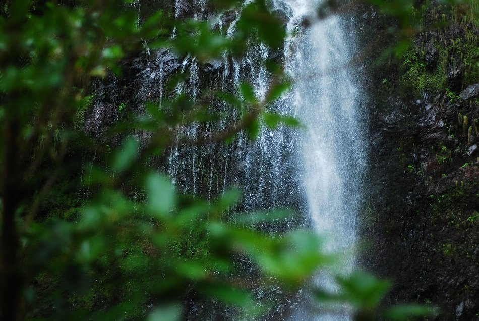 Waterfall on the mountain in the forest