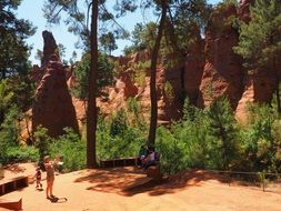 pine forest and ochre rocks
