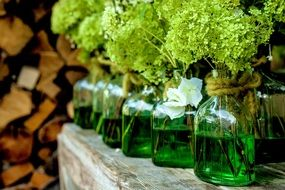 flower vases with green liquid