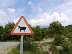 bull on a road sign on a road in spain