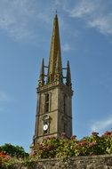 church tower and hydrangea bushes