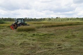 tractor mows grass in heathland