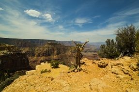 view over the gorge in the Grand Canyon