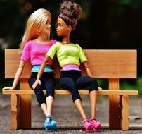 Barbie girlfriends on the wooden bench