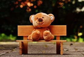 teddy bear sits on a wooden bench