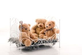 Crib Bears toy