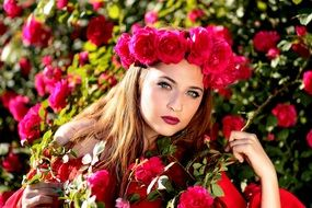 attractive woman on the rose bush background