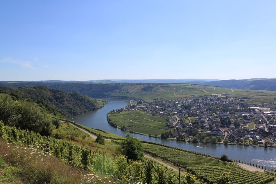 captivating Mosel Landscape