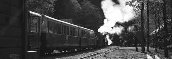 black and white picture of a train